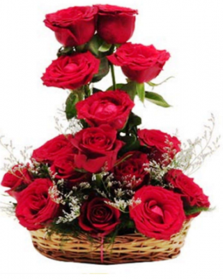 15 Red Roses Fresh Flowers Special Basket Arrangement (Red)